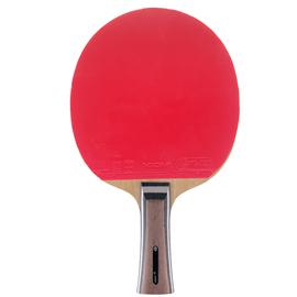 Ракетка для настольного тенниса XIOM Extreme S + Omega 4 Europe