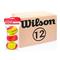 Теннисные мячи Wilson Starter Red Ball 36 мячей